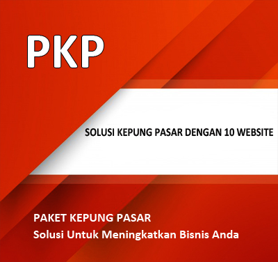 WEBSITE PKP